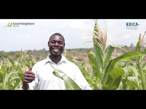 GOOD-NEIGHBORS-DOCUMENTARY-HELPING-SMALLHOLDER-FARMERS
